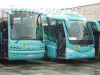 Sedo Autocares Y Microbuses